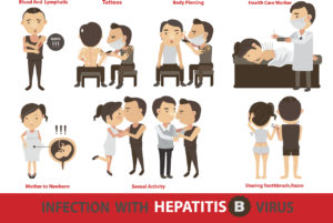 How do you get Hepatitis B?