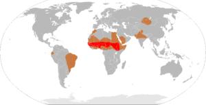 Countries where meningococcal meningitis is common